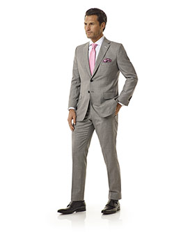 Executive Collection                                                                                                                                                                                                                                      , Light Gray Sharksin Suit - Executive Collection