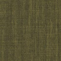 Lime 60%Kid Mohair 40%S120s Worsted Custom Suit Fabric