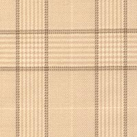 Almond 100% Super 180'S Worsted Custom Suit Fabric