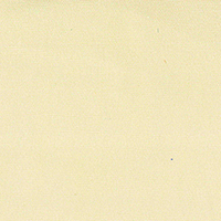 Cream Broadcloth Custom Shirt Fabric