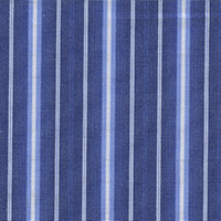 Blue Org Brdcloth Stripe Custom Shirt Fabric
