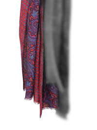 Scarf-Red Neat/Paisley