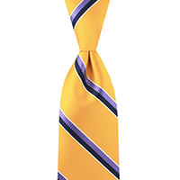 Neckwear-100% Silk - Gold